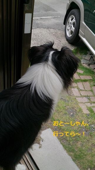s-DSC_0511.jpg