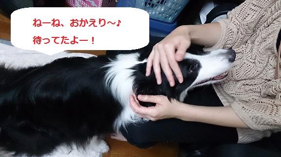 s-DSC_0525.jpg