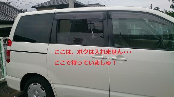 s-DSC_0613.jpg