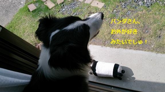 s-DSC_0839.jpg