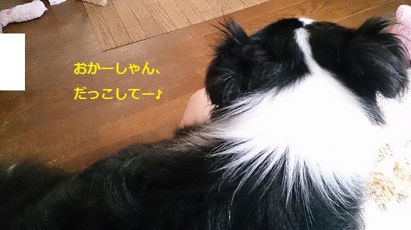 s-DSC_0871.jpg