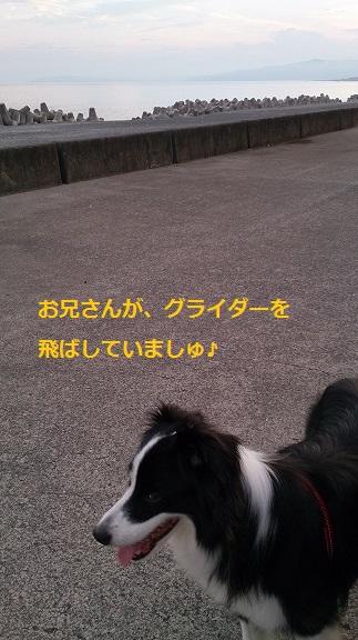 s-DSC_0880.jpg