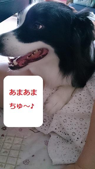 s-DSC_0928.jpg