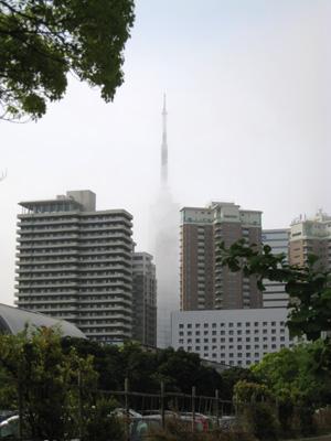 20110509-15.jpg