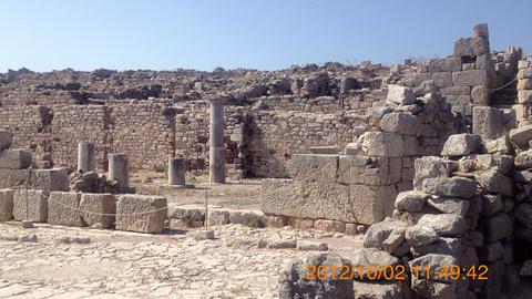 古代ティラ5