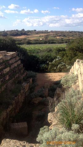 西神殿群北部住宅跡西側通路から西方向inセリヌンテ