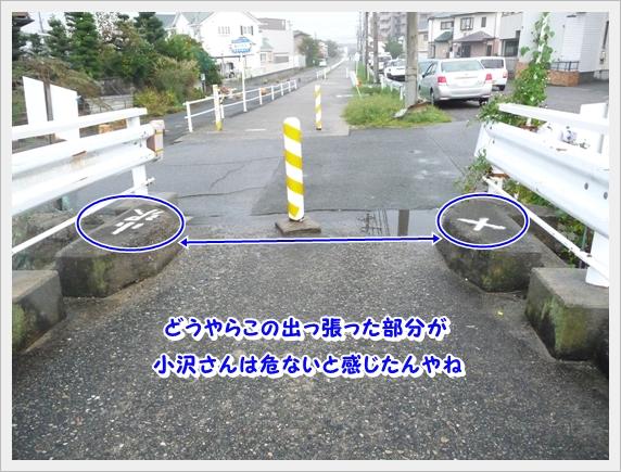 P1070284_1.jpg