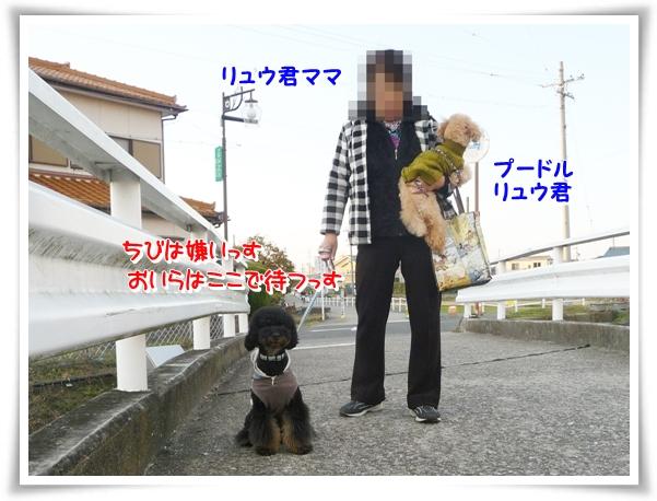 P1080020_1.jpg