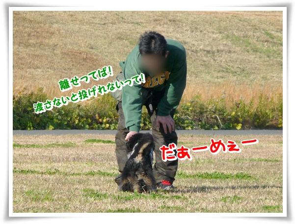 P1080140_1.jpg