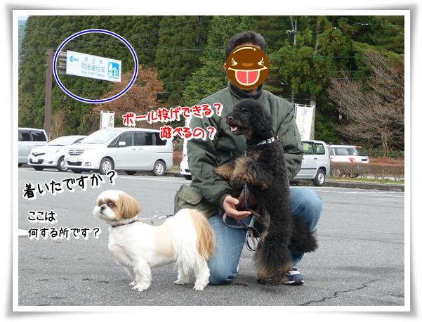 P1080344_1.jpg