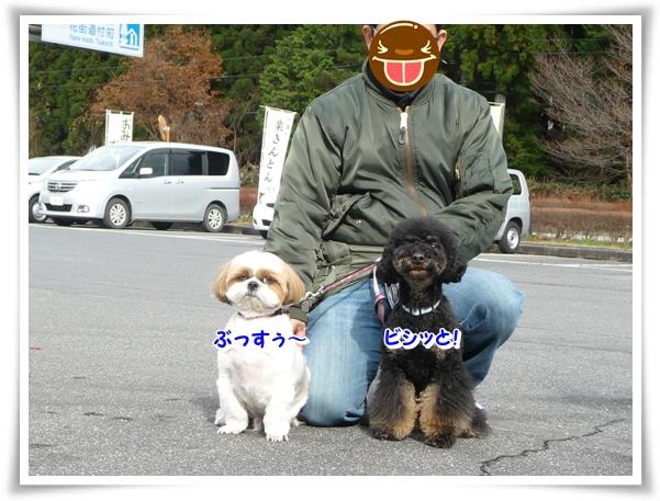 P1080345_1.jpg