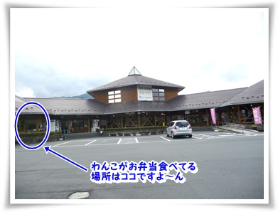 P1080430_1.jpg
