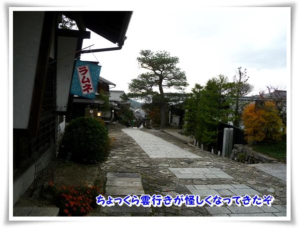 P1080470_1.jpg