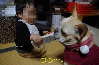 s-IMGP8763.jpg