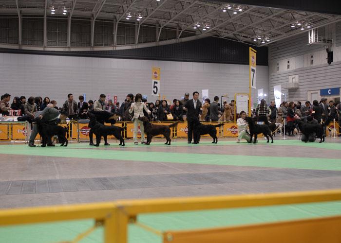 100221神奈川1-1