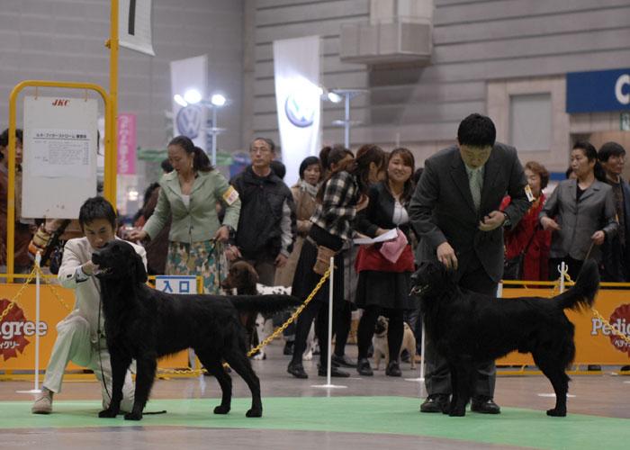 100221神奈川1-2