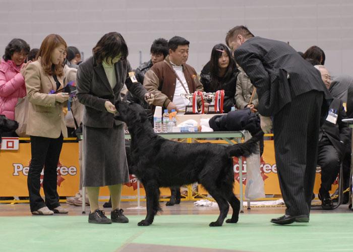 100221神奈川1ブルースゥ-2