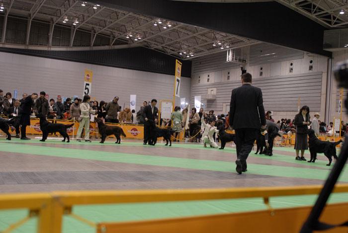 100221神奈川1-4