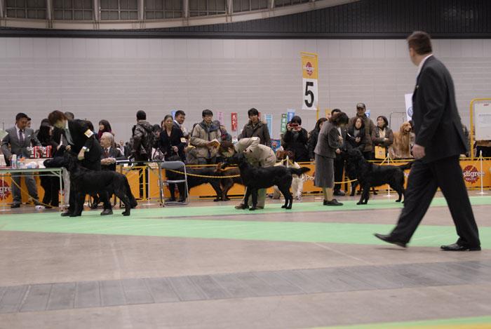 100221神奈川1ウィナー