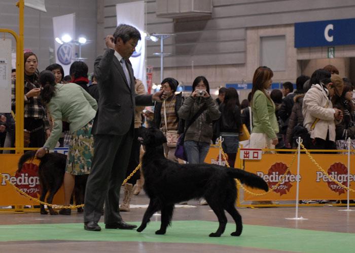 100221神奈川2てん-5