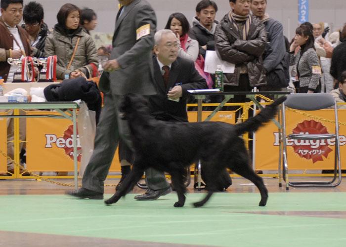 100221神奈川2てん-1
