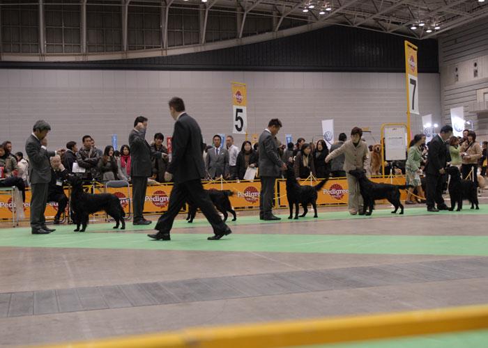 100221神奈川2-1