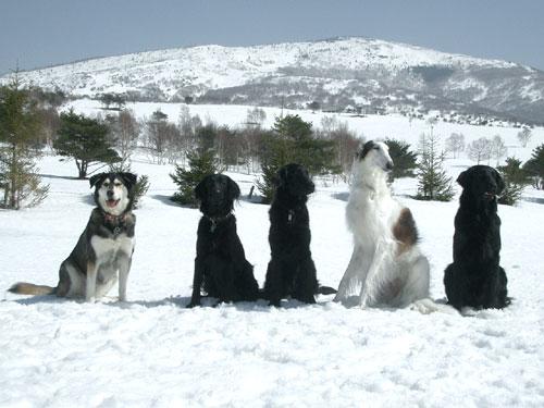 040314雪遊び