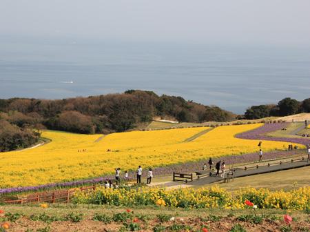 春祭り@淡路島-072