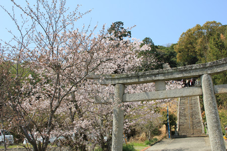 春祭り@淡路島-031