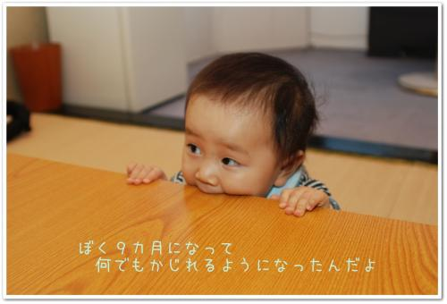 DSC_3144.jpg
