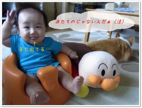 RIMG0160_20110826211134.jpg