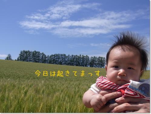 RIMG1189.jpg