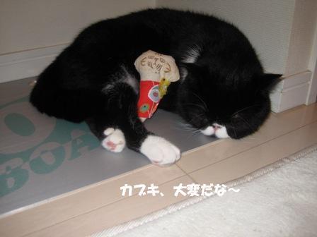 くつろぎジャパン