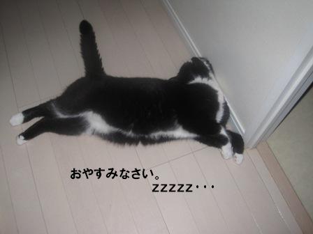 就寝ジャパン