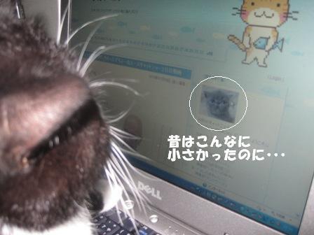 パソコン ジャパン