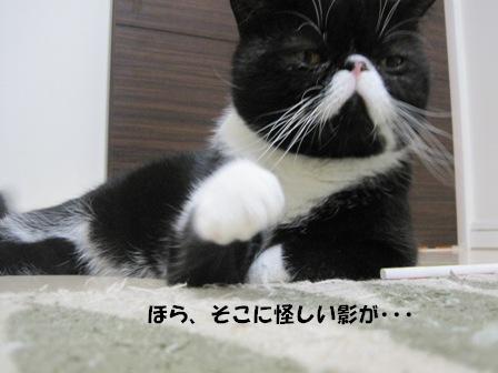 指差す ジャパン