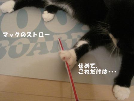 ストロー ジャパン