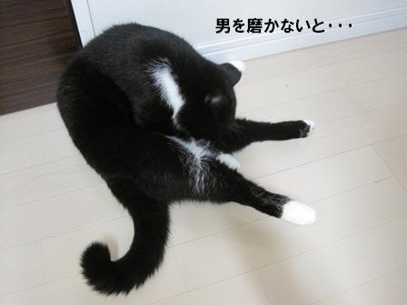 V字ジャパン