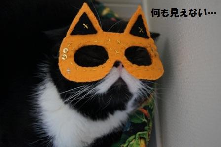 マスクジャパン
