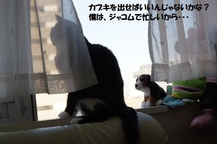 つぶやきジャパン