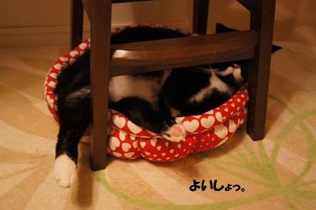 赤ベッドジャパン