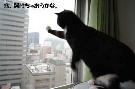 窓あけジャパン