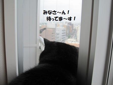 待ってま~すジャパン