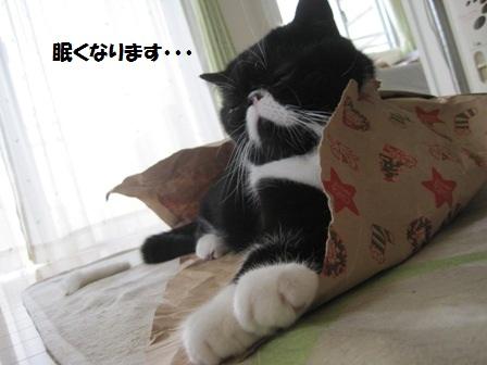 袋寝ジャパン