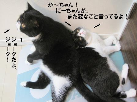 びっくりジャパン