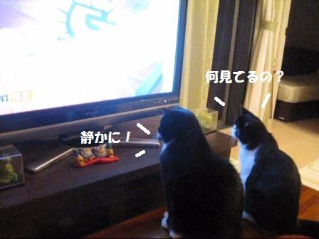 テレビJ&C