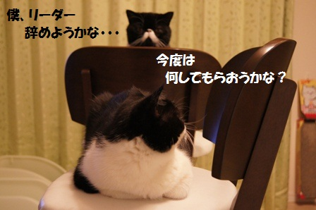 お悩みジャパン