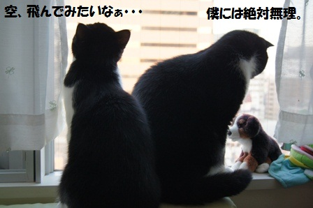 窓際J&C