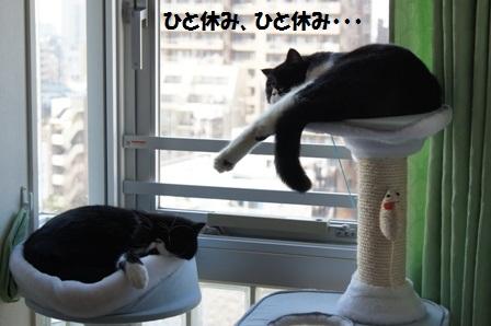 ひと休みJ&C