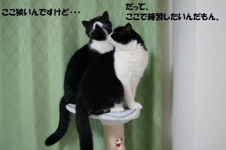 タワーJ&C